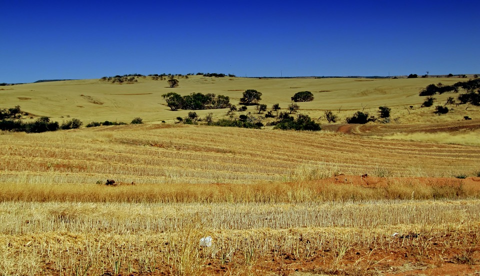 Winning long term: Australian farm sectorre-made